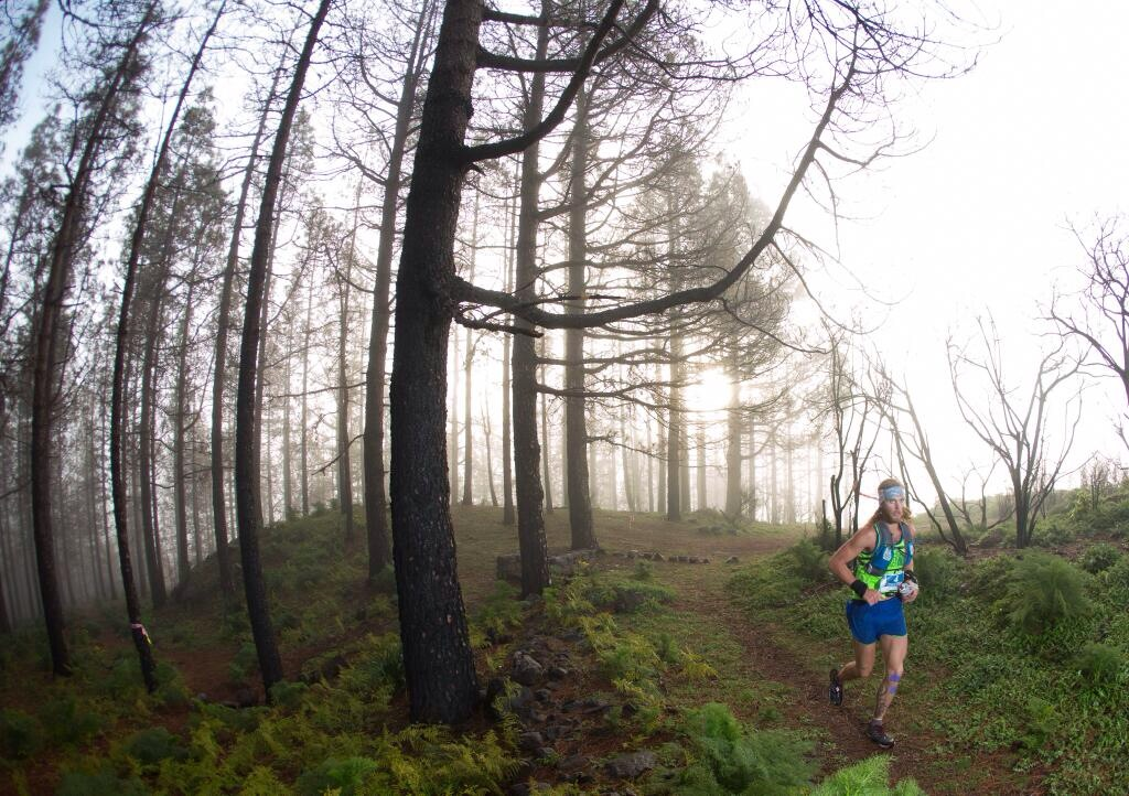 Transgrancanaria 125k - Timothy Olson running through the trees into Talayon.